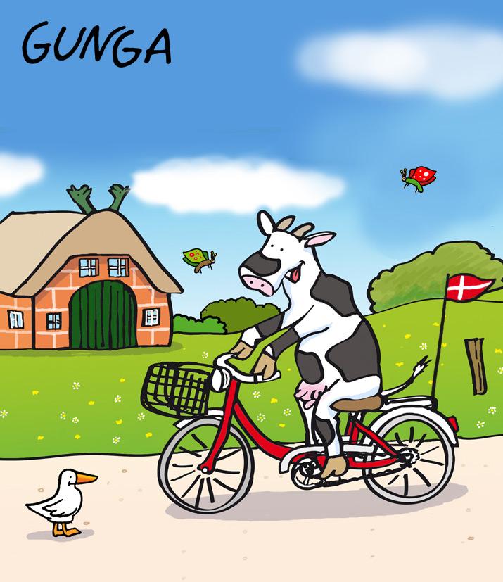 Alles Zu Dänemark Per Fahrrad Radfahren Urlaub Im Ferienhaus