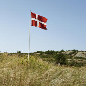 Dänische Flagge in den Dünen